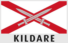 Driving lessons Kildare