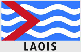 Driving lessons Laois
