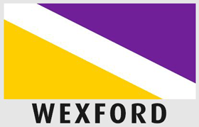 Driving lessons Wexford